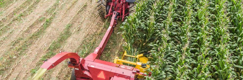 Aerial shot of Horning 2-row rotary corn head in action