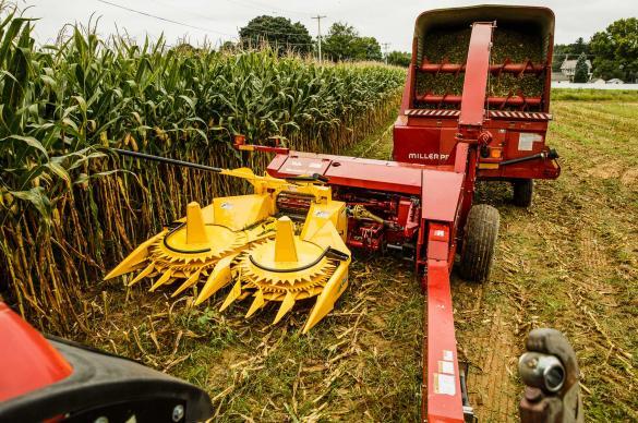 Horning 3-Row Rotary Corn Head
