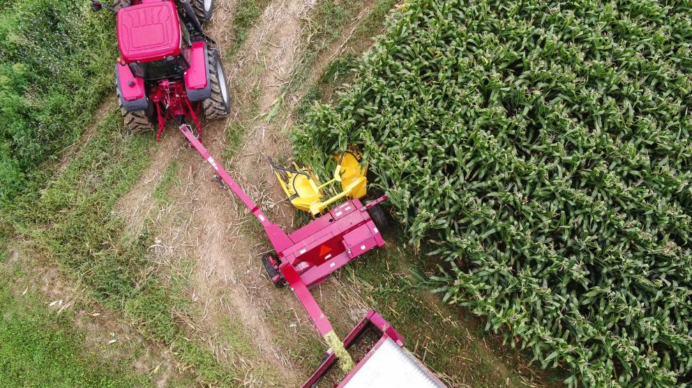 Aerial shot of Horning 3-row rotary corn head in action